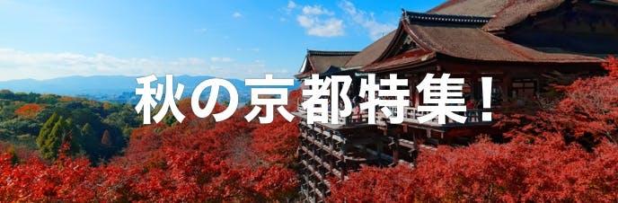 秋の京都特集!