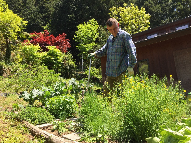 敷地内の家庭菜園