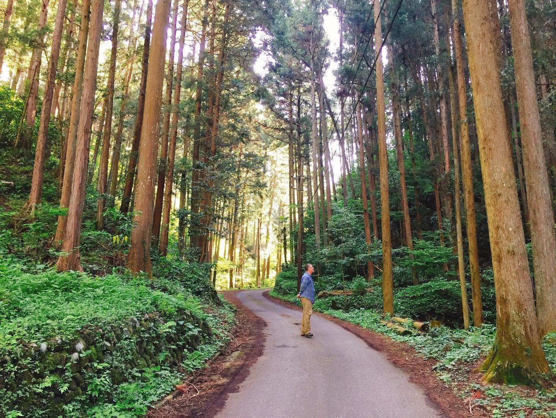 周辺のハイキングコース、鎌北湖と顔振峠への入り口