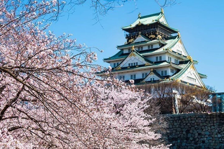 Osaka castle :tourist spot