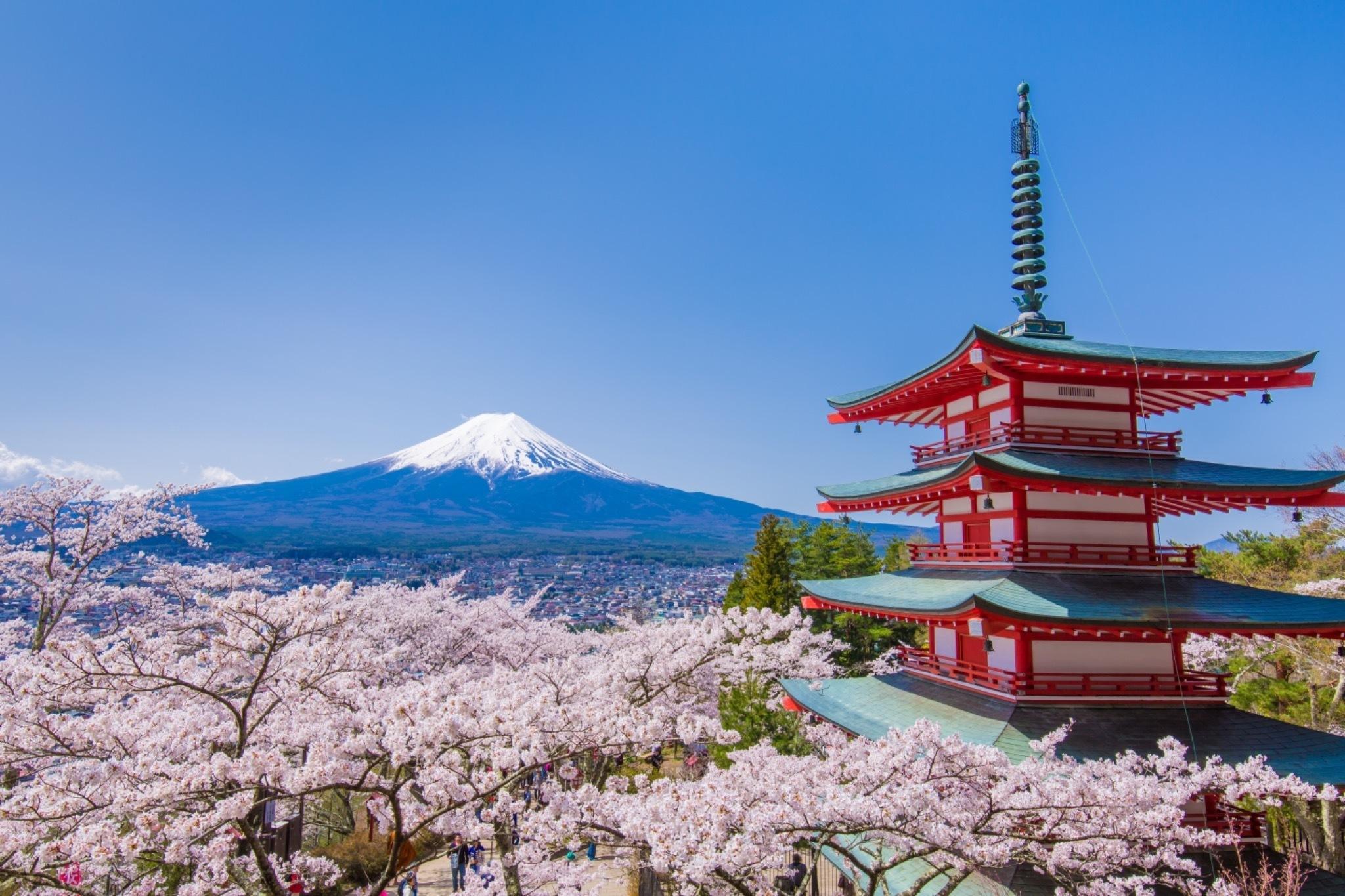 世界で最も有名な日本の写真。富士山、桜、五重の塔。日本のトッピング全部のせ!