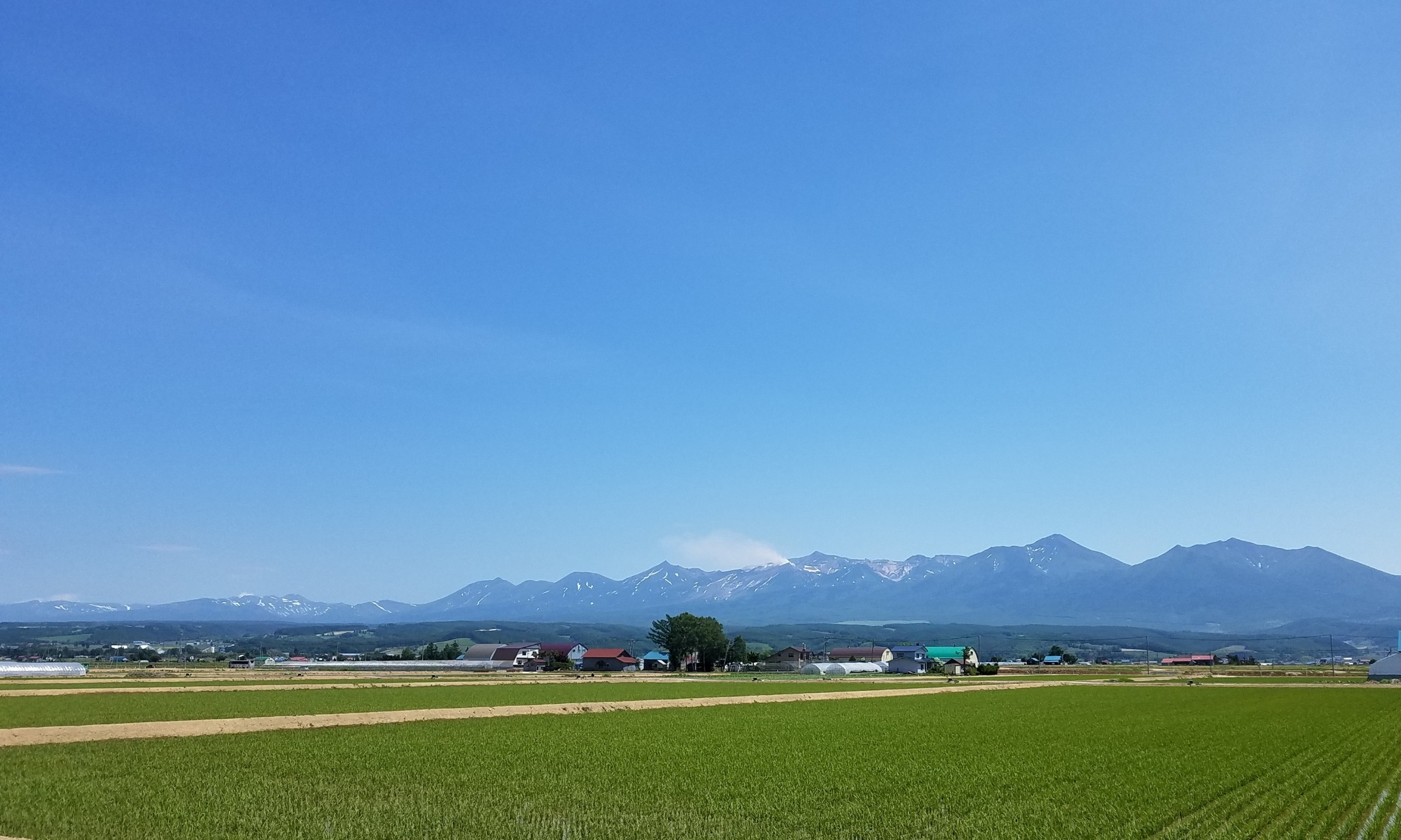 前の景色(夏)